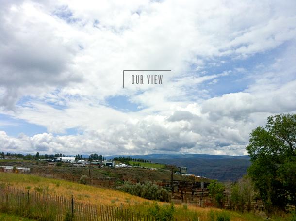 sasquatch-premier-camp-view